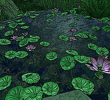Lily Pad Lake by Mndane-Amzmnt