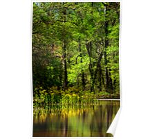 Wildflower Reflections Poster