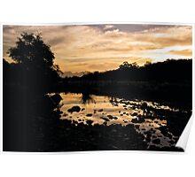Olifants River Sunset Poster