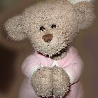 Good Nite Ted by L J Fraser