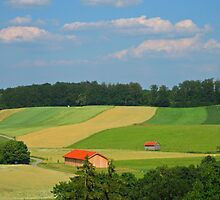 Bavarian Countryside by Paul Schneider