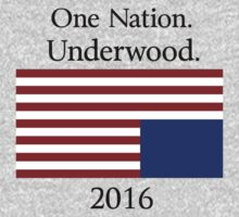 Frank Underwood for President by SuperGuy