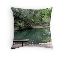 Wash Pond Throw Pillow