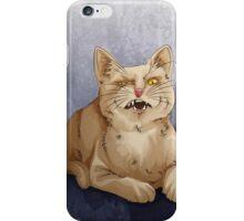 cathursday #17 iPhone Case/Skin