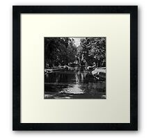 Salmon Ponds Framed Print
