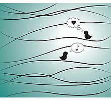 Love Birds - Blue Photographic Print