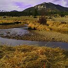 Rocky Mountain National Park by Craig Forhan