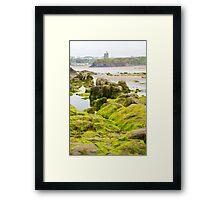 ballybunion castle algae covered rocks view Framed Print