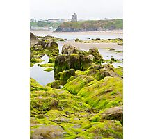 ballybunion castle algae covered rocks view Photographic Print