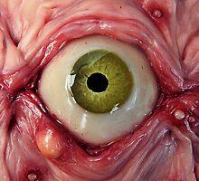 ol' green pimple eye by dogzillalives