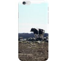 Mo's View of Bodacious Bovines 6 iPhone Case/Skin