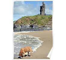 wild atlantic way castle and dog Poster