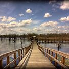 Black Bayou Pier by steini