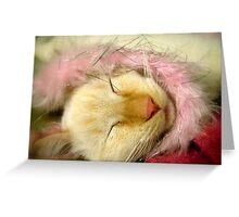 Purrrrrty In Pink Greeting Card