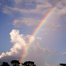 Rainbow &amp; Rain by MMerritt