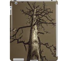 Dead Tree Near Sedona Arizona iPad Case/Skin