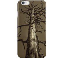 Dead Tree Near Sedona Arizona iPhone Case/Skin
