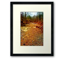 GOLD PATH Framed Print