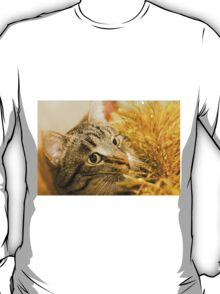 Tabby Cat and Yellow Tinsel 6 T-Shirt