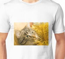 Tabby Cat and Yellow Tinsel 6 Unisex T-Shirt