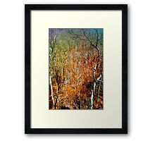GONE FALL Framed Print