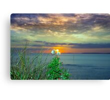 yellow sunset over loop head with thistles Canvas Print