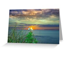 yellow sunset over loop head with thistles Greeting Card