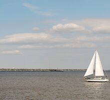 Sailboat Against the Blue Sky by Mark McElroy