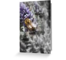 'Bee Beautiful' Greeting Card