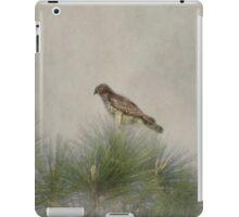 Hawk in the Treetop iPad Case/Skin