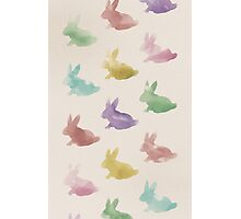 Pastel Rabbit Inkwash Silhouettes Photographic Print