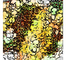 Faces in the Crowd Photographic Print