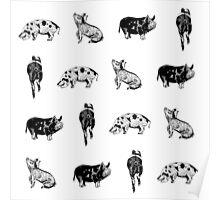 Piggies Poster