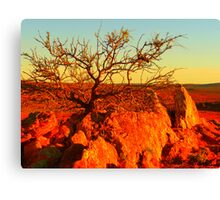 life, once upon a time Canvas Print