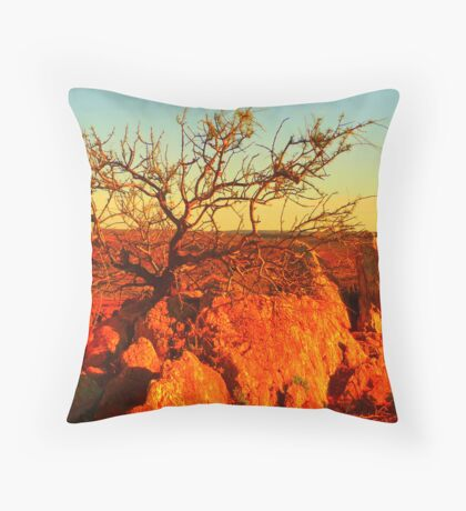 life, once upon a time Throw Pillow