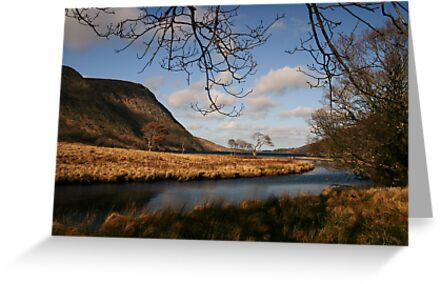 Lake in Glenveagh National Park #1 by Martina Fagan