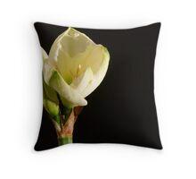 Amaryllis - Belladonna Lily or naked ladies Throw Pillow