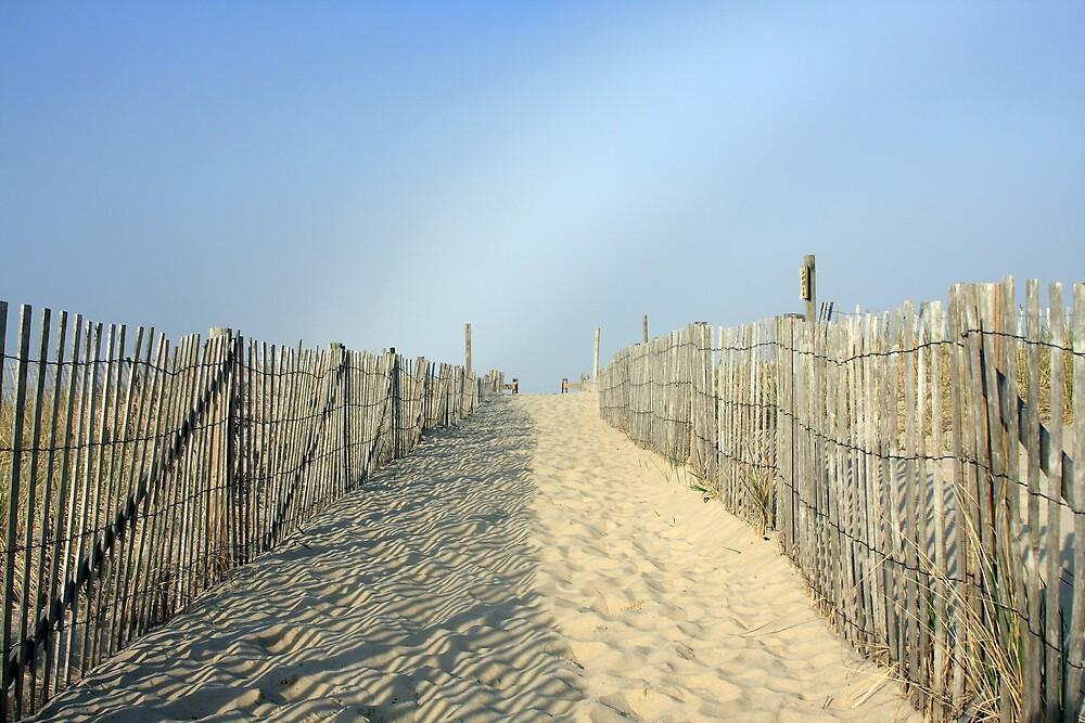 Nauset Beach by capecodart