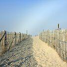 Nauset Beach by Artist Dapixara