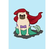 The Little Mer-Pug version 2 Photographic Print