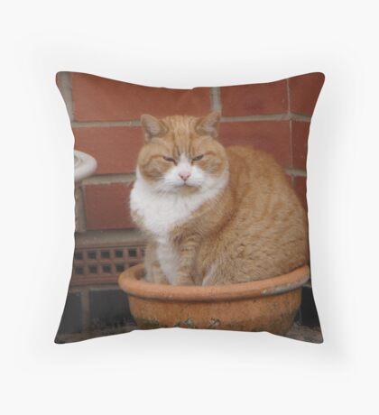 Water carefully Throw Pillow