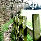 Fence with Pathway by shakey123