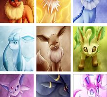 Eeveelution by muffinman7779