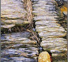 Between a Rock.... by Nancy Barrett