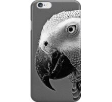 The African Grey Parrot  iPhone Case/Skin