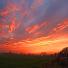 Sunset Over Harlow Common by Nigel Bangert