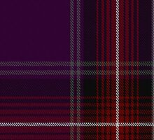 00371 Isle of Arran #2 Tartan  by Detnecs2013