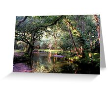 Dartmoor Stream Greeting Card