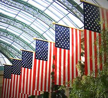FLAGS OF AMERICA by gracestout2007