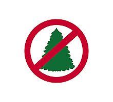 No christmas fir tree Photographic Print